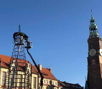 Wrocław. Choinka powstaje na Rynku. A co z oświetleniem miasta w tym roku? (ZDJĘCIA)