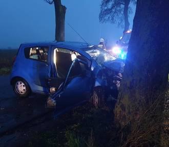 Wypadek niedaleko Unisławia. Nie żyje jedna osoba [zdjęcia]