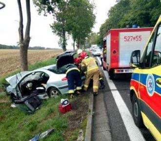 Groźny wypadek na DK-6. Peugeot uderzył w drzewo. Seat zjechał z drogi i dachował