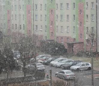 W Wieluniu wietrznie, sypnęło także śniegiem. Jaka pogoda czeka nas w najbliższe dni