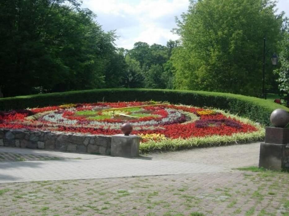 Zegar słoneczny, utworzony z wielu kompozycji kwiatowych
