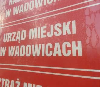 Wadowice. Majątki ludzi burmistrza Bartosza Kalińskiego. Ile zarabiają? Czym jeżdżą?