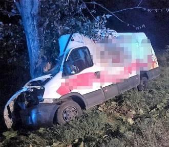 Malechowo: Auto dostawcze uderzyło w przydrożne drzewo [ZDJĘCIA] - 20.08.2019 r.
