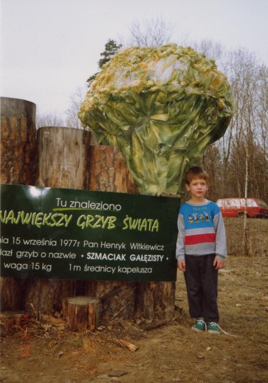 W Księdze Rekordów Guinnessa swojego czasu zagościł również polski grzyb