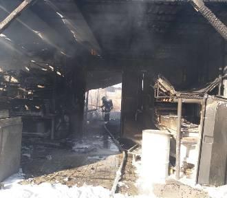 Zdjęcia OSP Osiecznica z pożaru zakładu przy ul. Gubińskiej (ZDJĘCIA)