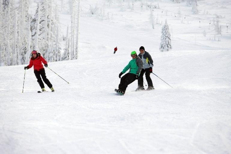 Wyciąg i stok narciarski Solina – WZW Jawor