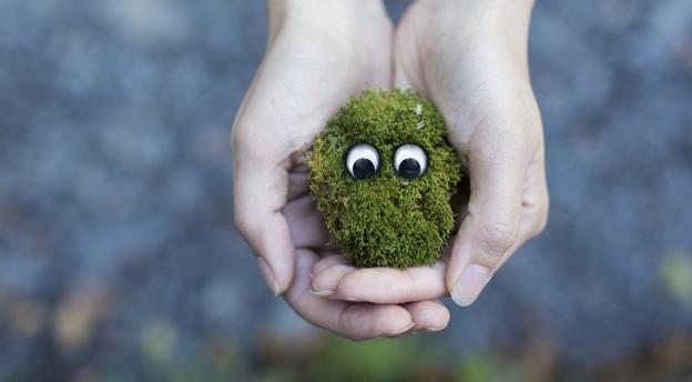 Czy jesteś ekologicznym szkodnikiem? Sprawdź, co możesz zrobić dla środowiska! QUIZ