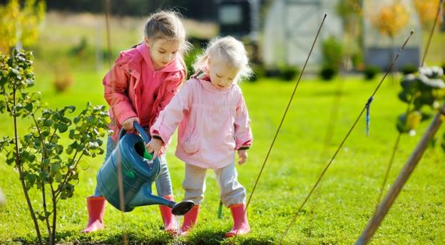 Wracamy do ogródka! A co wiesz o ogrodnictwie? Sprawdź się w tym teście! QUIZ