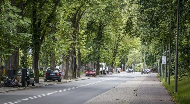 Rozpoznasz ulice Trójmiasta na zdjęciach?