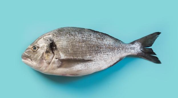 Czy znasz polskie powiedzenia? A czy wiesz od czego psuje się ryba? QUIZ