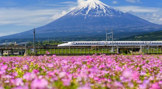 Czy wiesz co to ramen i tatami? Sprawdź, swoją wiedzę na temat Japonii! QUIZ