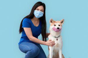Prawda czy fałsz? Koronawirusem można zarazić się od własnego psa.lub kota.