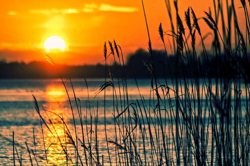 Jeziora i zalewy w woj. lubelskim. Sprawdź, jak dużo o nich wiesz (QUIZ)